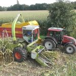 Claas Jaguar 80 SF