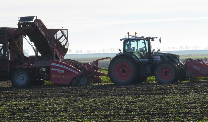 Grimme Rootster