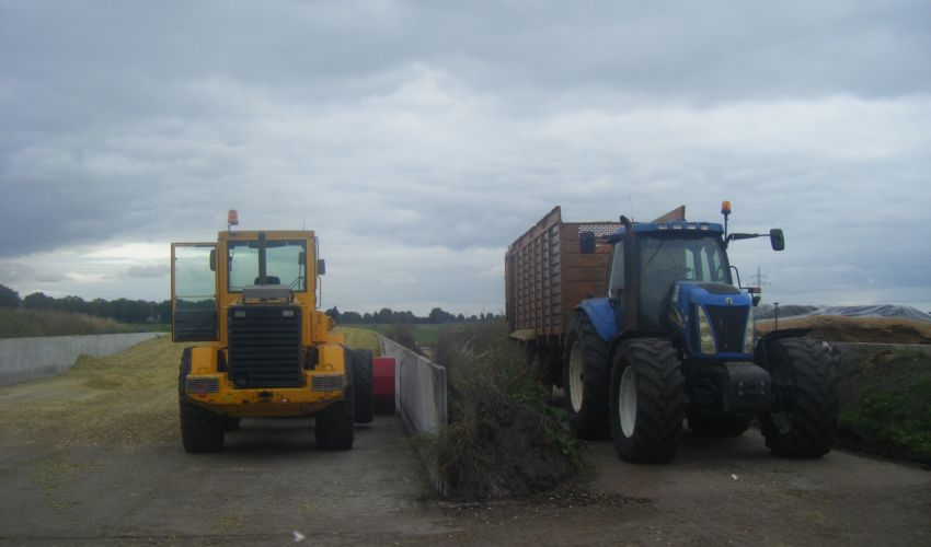 New Holland TG 275