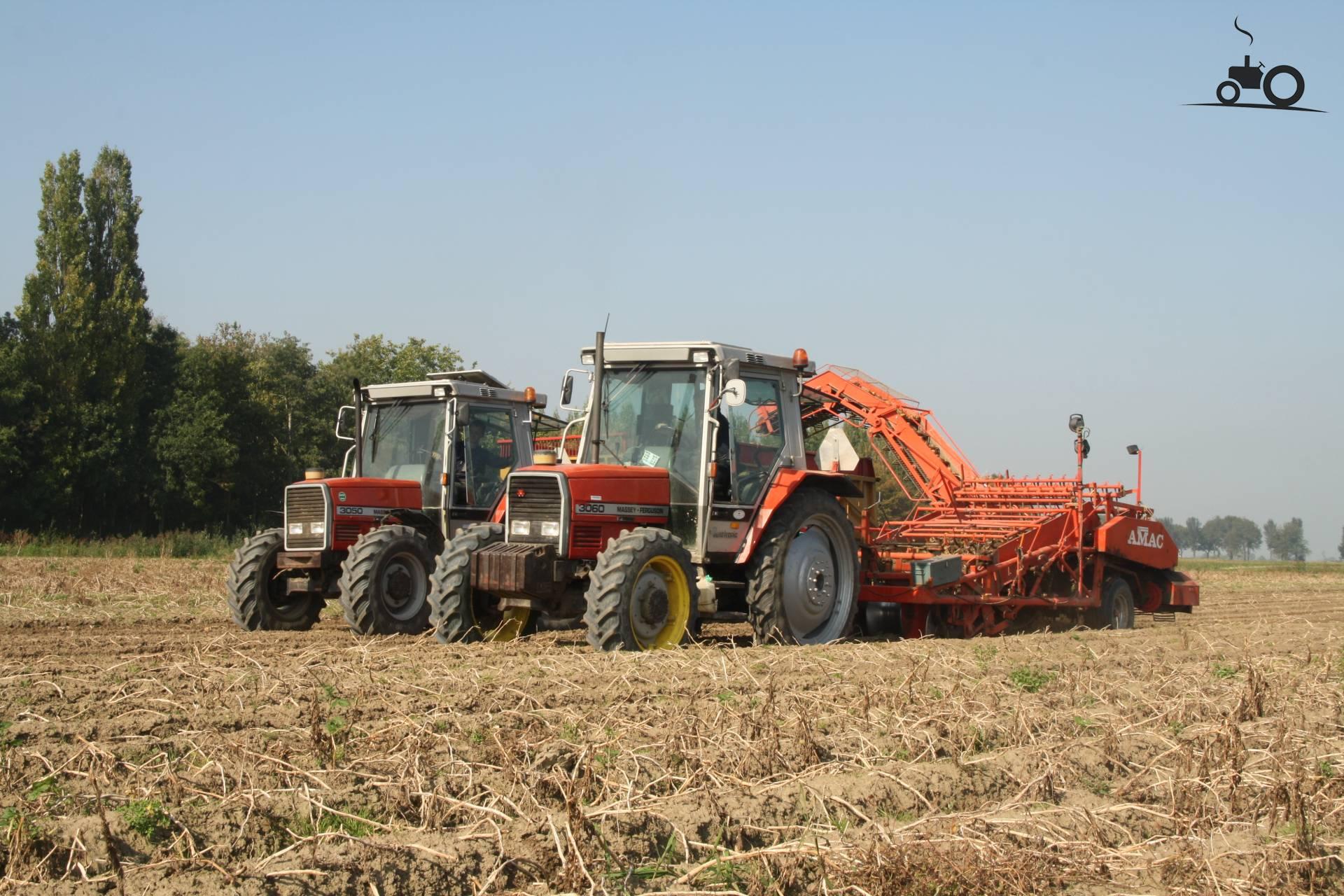 Massey Ferguson 3000-Serie van joris Druk bezig met aardappels rooien..