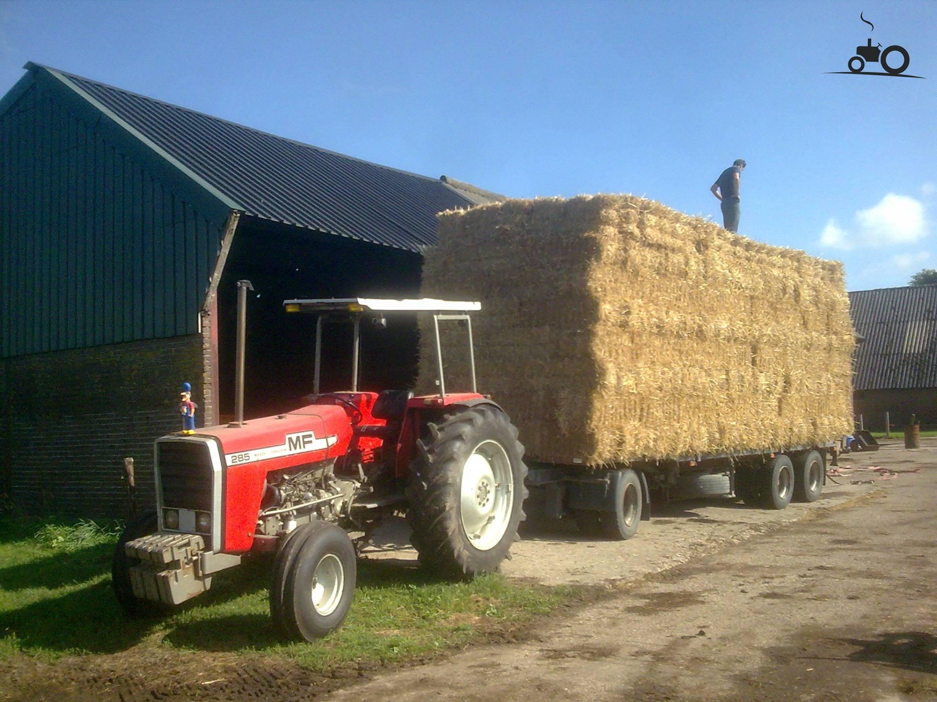 Massey Ferguson 285 Tractor Information : Massey ferguson g