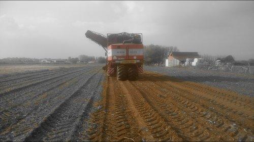 Foto van een Agrifac Bietenrooier. Geplaatst door O N op 30-10-2016 om 12:53:11, op TractorFan.nl - de nummer 1 tractor foto website.