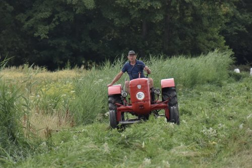 Foto van een Allgaier Bezig met slootkantje maaien in Flevoland. Geplaatst door warmerbros op 23-07-2021 om 22:59:12, met 5 reacties.