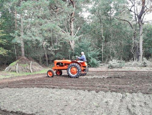 Het rogge land van Overijssels landschap aan het eggen om kweek gras uit te laten drogen.. Geplaatst door allis man op 03-10-2020 om 21:47:01, met 5 reacties.