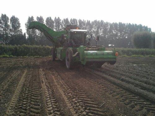 Foto van een Avr Mistral, bezig met aardappels rooien.. Geplaatst door unimog-406 op 01-10-2013 om 16:36:24, op TractorFan.nl - de nummer 1 tractor foto website.