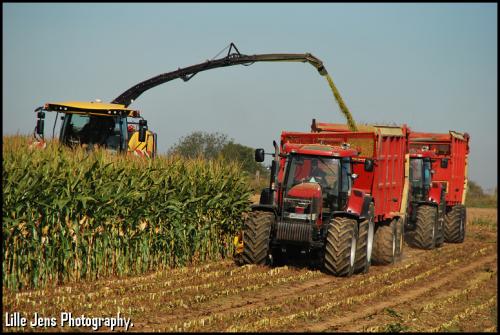Vandenbulcke F. - Bellegem.. Geplaatst door Lille Jens op 11-09-2019 om 16:44:52, op TractorFan.nl - de nummer 1 tractor foto website.
