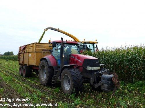 Foto van een Case IH Puma 225 , loonbedrijf van de Berg uit Wapse aan het mais hakselen. ZIE OOK DE VIDEO  https://youtu.be/_cVGUMiO4bQ
