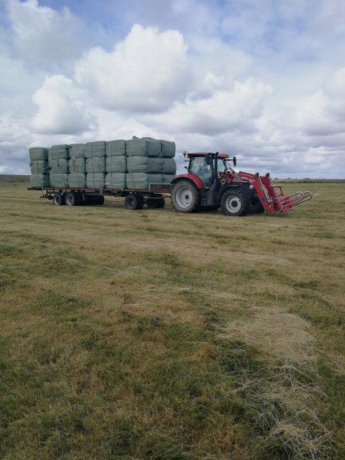 Foto van een Case IH Maxxum 115 Pro. Geplaatst door johndeerefavo op 29-12-2019 om 00:59:36, op TractorFan.nl - de nummer 1 tractor foto website.