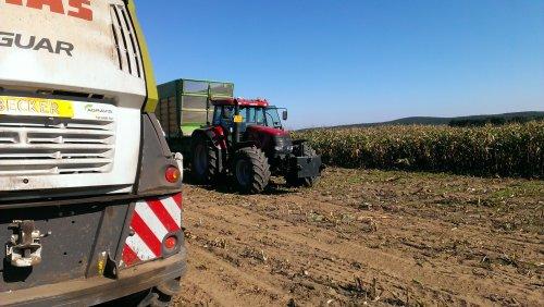 Foto van een Case IH CVX 175, bezig met poseren.. Geplaatst door Fendt-LSA op 08-10-2013 om 15:37:28, op TractorFan.nl - de nummer 1 tractor foto website.
