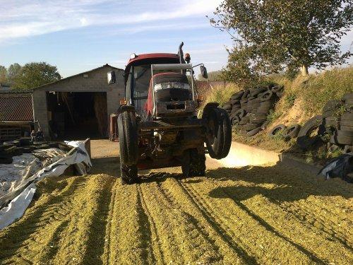 Foto van een Case IH JX 80, bezig met maïs inkuilen.. Geplaatst door RobinVL op 03-11-2013 om 18:03:28, met 13 reacties.