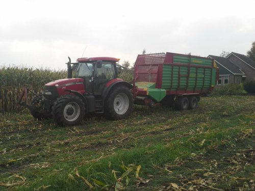 Foto van een Case IH Maxxum 115 Pro, bezig met maïs inkuilen. Geplaatst door Rdeweerd op 29-08-2014 om 09:39:51, op TractorFan.nl - de nummer 1 tractor foto website.