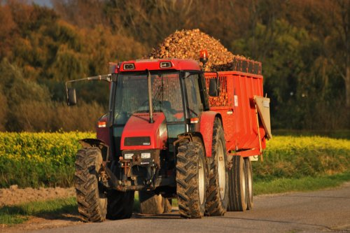 Case IH CS 94 van NHtvt135