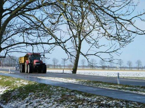 Foto van een Case IH Maxxum 115 Pro, druk bezig met Dumperen.. Geplaatst door johndeerefavo op 01-02-2015 om 15:12:50, op TractorFan.nl - de nummer 1 tractor foto website.