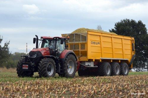 Case IH Optum 300 met Dewa 3 asser op naar de kuil!  Wilvagro!. Geplaatst door KennyT op 01-10-2016 om 20:07:30, op TractorFan.nl - de nummer 1 tractor foto website.