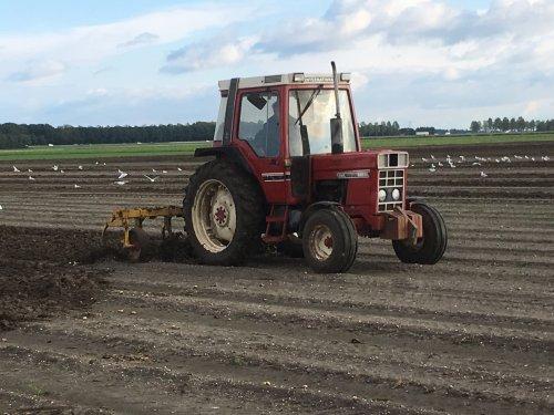 Foto van een International 685. Geplaatst door Fast Eddy op 27-12-2016 om 11:44:34, op TractorFan.nl - de nummer 1 tractor foto website.