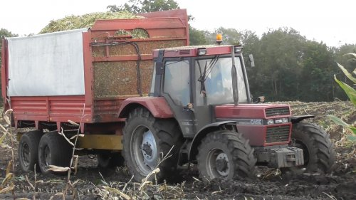 6 oktober 2017 - Maisoogst te Weerselo. Op de foto de Case International 1056XL met Schuitemaker Silagewagen. https://www.youtube.com/watch?v=YMD6zsjau9M