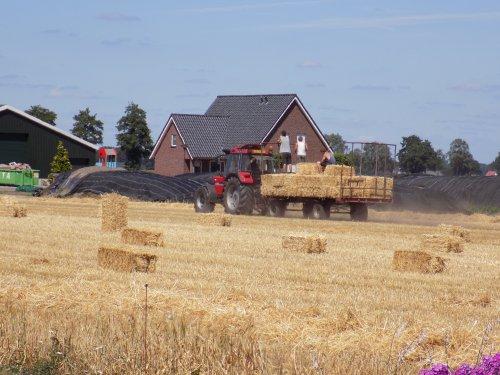 Stro baaltjes laden met de 956 XL. Geplaatst door Han745XL op 09-08-2018 om 21:28:35, op TractorFan.nl - de nummer 1 tractor foto website.