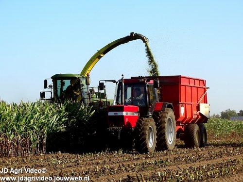 Foto van een Case International 1455 XL, Loonbedrijf Molenaar uit Lunteren aan het mais hakselen. ZIE OOK DE VIDEO  https://youtu.be/UcD28LHjomU