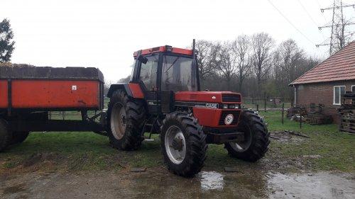 Case International 956 XL vrachtje paardenmest halen. Geplaatst door Aris v Deelen op 16-03-2019 om 08:41:43, op TractorFan.nl - de nummer 1 tractor foto website.
