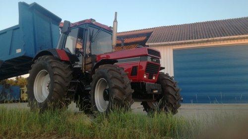 Wat een pareltje een prachtig opgeknapte 1455xl. Geplaatst door jd7920 op 01-07-2019 om 23:22:37, op TractorFan.nl - de nummer 1 tractor foto website.