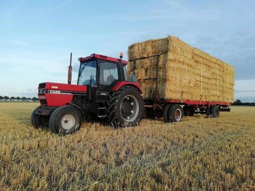 Case International 845 XL waar ik deze zomer stro mee ben gaan halen voor een bevriende landbouwer.. Geplaatst door maarten-suykerbuyk op 16-02-2020 om 20:17:39, met 10 reacties.
