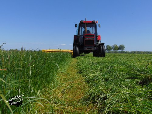 Case International 745 XL met Fella maaier!. Geplaatst door Han745XL op 10-05-2020 om 22:50:18, op TractorFan.nl - de nummer 1 tractor foto website.