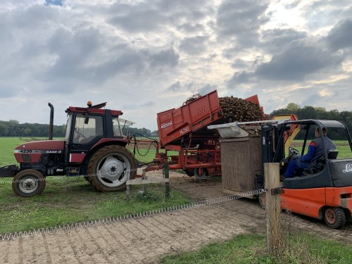 Case International 4230 van bob-te-lindert