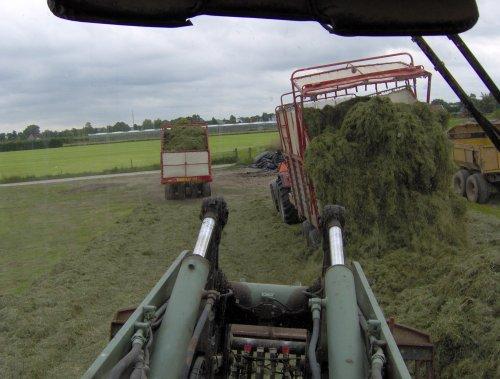 Foto van een Case International 1056 XL, bezig met gras inkuilen.. Geplaatst door basconijn97 op 21-06-2013 om 21:51:42, met 3 reacties.