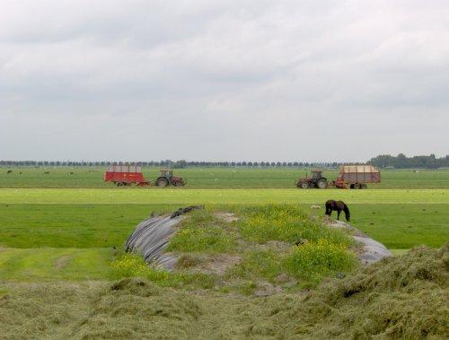 Foto van een Case International 1056 XL, bezig met gras inkuilen.. Geplaatst door basconijn97 op 21-06-2013 om 21:51:50, met 2 reacties.
