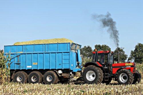 Foto van een Case International 1455 XL, bezig met maïs hakselen. Van der Ven uit Zeeland bezig in Odiliapeel vandaag. Later meer op https://www.facebook.com/DVDSlandbouwfotografie