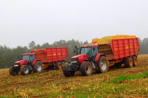 Case IH Maxxum MX 170 van Martin Holland