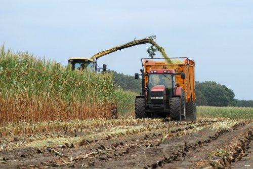 Ook Bekedam Dalfsen hakselde vandaag de eerste mais eraf die verdroogd was.. Geplaatst door pekkerietfan op 09-08-2018 om 20:18:57, op TractorFan.nl - de nummer 1 tractor foto website.