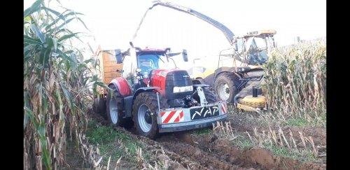 Loonbedrijf G. Nap (Ede Gld) × op de foto met een Case Meerdere. https://youtu.be/ry38Z_7sWQI. Geplaatst door g-g op 07-12-2019 om 14:58:32, op TractorFan.nl - de nummer 1 tractor foto website.