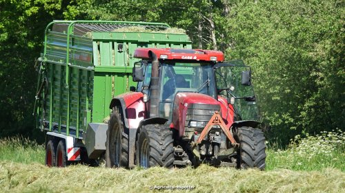 VIDEO: https://www.youtube.com/watch?v=LvpXKDuc4sE Gras oprapen in Zwartebroek met een CASE IH CVX 195 en een Fendt Tigo 50 MS opraapwagen van Jelle Middelaar.