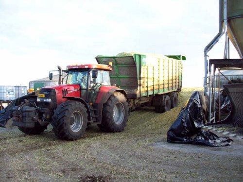 Foto van een Case CVX 195, bezig met maïs hakselen.  foto had ik nog op pc staan , foto is al van een paar weken terug