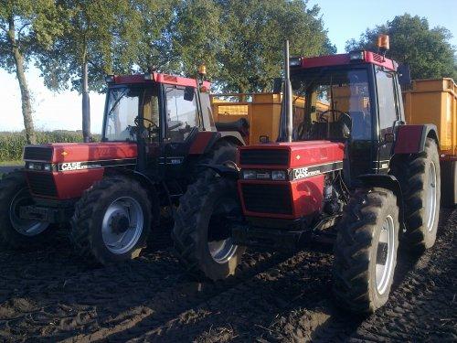 Foto van een Case Meerdere, 2 beren. Geplaatst door fendt power op 12-10-2010 om 17:31:02, op TractorFan.nl - de nummer 1 tractor foto website.