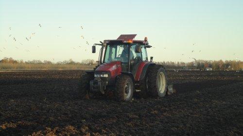 Foto van een Case IH JXU 75, bezig met kopeggen!. Geplaatst door robert tiggelaar op 06-03-2011 om 20:45:53, op TractorFan.nl - de nummer 1 tractor foto website.