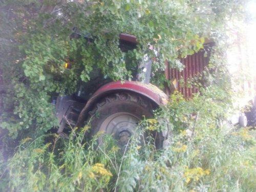 Foto van een Case Puma 180 CVX, bezig met maïs hakselen.. Geplaatst door mjwarts op 13-10-2013 om 21:08:56, met 8 reacties.