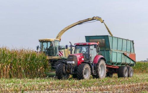 De Case IH Puma 160 CVX van Loonbedrijf de Wit Beemster druk in de mais!. Geplaatst door Simco vd Deure op 02-10-2016 om 13:02:34, op TractorFan.nl - de nummer 1 tractor foto website.