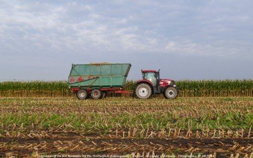 De Case IH Puma 160 CVX van Loonbedrijf de Wit Beemster druk in de mais!. Geplaatst door Simco vd Deure op 02-10-2016 om 13:02:42, op TractorFan.nl - de nummer 1 tractor foto website.