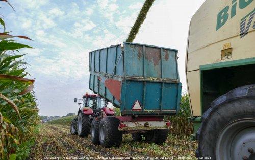 De Case IH Puma 160 CVX van Loonbedrijf de Wit Beemster druk in de mais!. Geplaatst door Simco vd Deure op 02-10-2016 om 13:02:49, op TractorFan.nl - de nummer 1 tractor foto website.