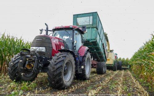 De Case IH Puma 160 CVX van Loonbedrijf de Wit Beemster druk in de mais!. Geplaatst door Simco vd Deure op 02-10-2016 om 13:02:53, op TractorFan.nl - de nummer 1 tractor foto website.