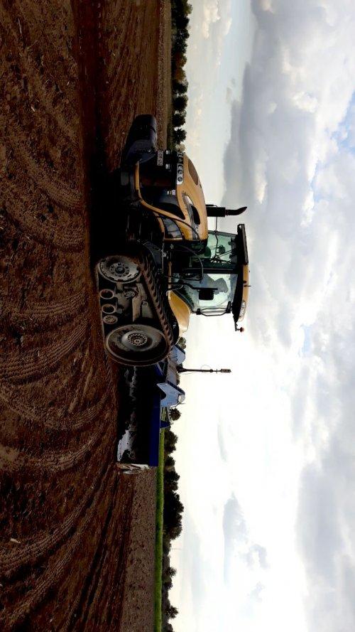Foto van een Challenger model weet ik nie maar als iemand het weet zet het in reactie. Geplaatst door Bart steyr op 23-11-2019 om 23:04:51, op TractorFan.nl - de nummer 1 tractor foto website.