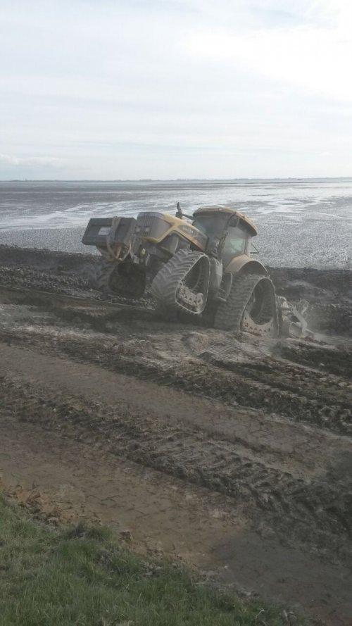 Foto van een Challenger MT665B, druk bezig met bodem stabiliseren. Terrastab/ hans maas, beek en donk