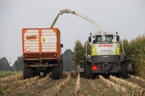 Loonbedrijf De Samenwerking BV aan het maïs hakselen met hun Claas Jaguar 850 met Claas RU 450 xtra maisbek.  Meer foto's zijn te bekijken op: http://www.trekkerfotografie.nl