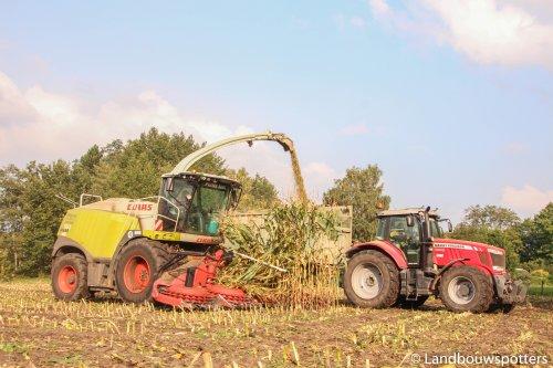 Van Ryckegem Frankie uit Lokeren. Geplaatst door tractorfreek op 15-10-2017 om 20:13:41, op TractorFan.nl - de nummer 1 tractor foto website.