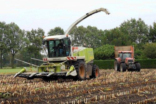 Mais door Grootenhuis Stegeren (Ommen)  https://www.youtube.com/watch?v=omJaxlvBYNw. Geplaatst door pekkerietfan op 05-11-2017 om 15:25:08, op TractorFan.nl - de nummer 1 tractor foto website.