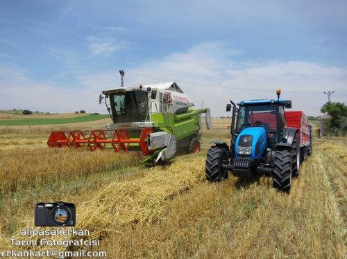 Barley Harvest With Claas Medion 340 2017...!!!. Geplaatst door alipasalierkan op 06-12-2017 om 20:39:03, op TractorFan.nl - de nummer 1 tractor foto website.