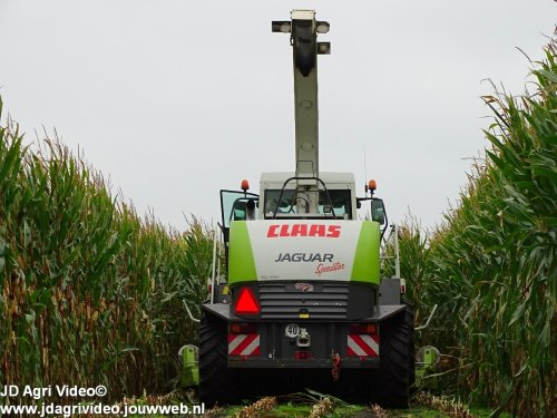 Foto van een Claas Jaguar 870 Speedstar, Loonbedrijf Mts. Stegeman uit Vinkenbuurt aan het mais hakselen. ZIE OOK DE VIDEO  https://www.youtube.com/watch?v=iT9Ab95vdP0
