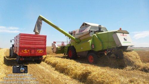 Barley Harvest With Claas Medion 340 2016...!!!. Geplaatst door alipasalierkan op 12-03-2018 om 20:03:48, op TractorFan.nl - de nummer 1 tractor foto website.